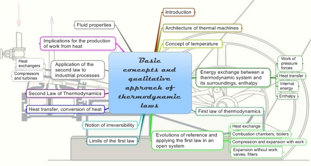 Organ systems and functions